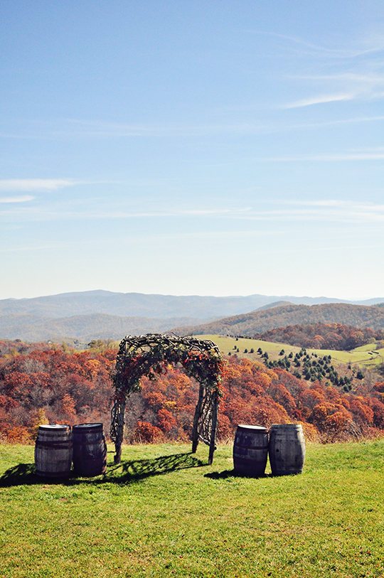 Banner Elk Vineyard