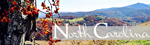 NorthCarolina_500