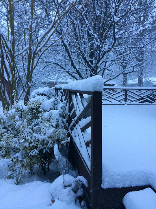 20150226-Snow_web