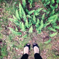 My really amazing hiking shoes. They look just like flats because they're flats.