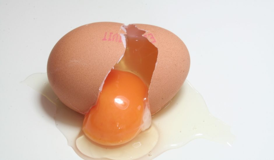 cracked egg-slider